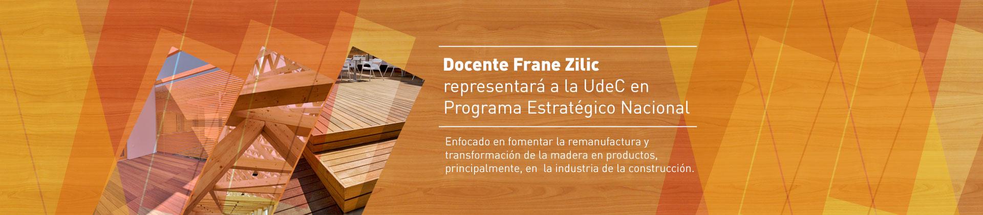 frane-zilic-programa-estartegico1