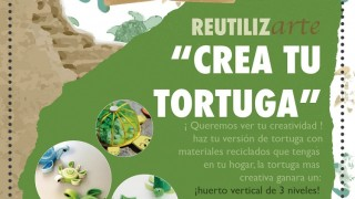 Concurso Tortugas