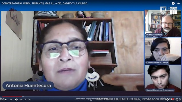 pantallazo mapuche2